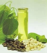 Aceites naturales linaza, ajonjoli, alpiste, sacha inchi