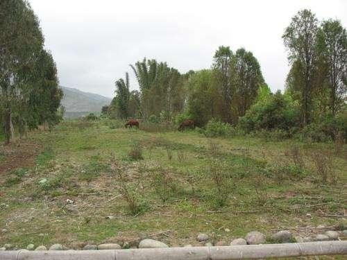 Fotos de Terreno agrícola santa cruz de flores-mala-azpitia 1