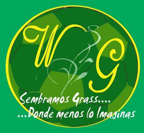 Venta de grass natural a precios super rebajados..!!! waltergarden grass desde el valle de huachipa