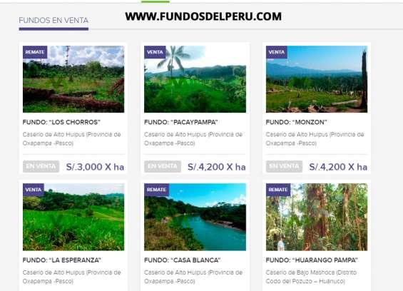 Fundos en venta en la selva peruana