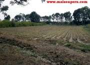 Vendo terreno hacienda san andrés, km. 75 ( 109)