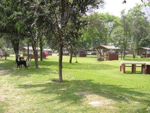 Fotos de Alquilo casa en huampaní. naturaleza, descanso y seguridad todo el año. 4