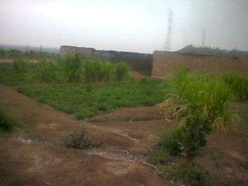 Vendo terreno en el alto laran - chincha