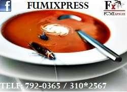 Servicio de fumigacion para el hogar comercio e industria, fumigacion casas, fumigacion departamentos, fumigacion oficinas lima peru