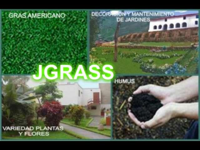 Empresa dedicada a la venta de grass americano, plantas ornamentales y mantenimiento todo el año telf.: 7708761/ 980513910 / 996164520 / 424*7795