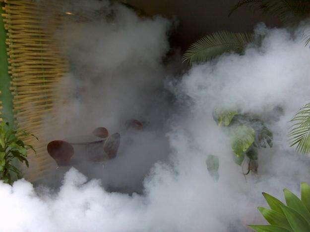 Fumigaciones en la molina 957912887 / 792-0365