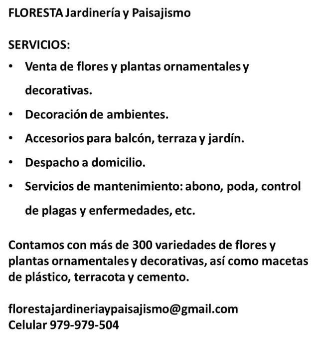 Vivero express, venta de plantas ornamentales y decorativas. despacho a domicilio.