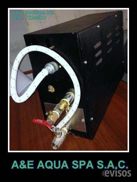 Generador de vapor electrico