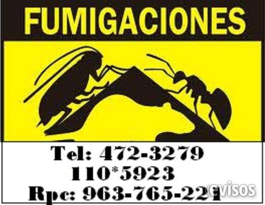 Fumigaciones contra pulgas, garrapatas, chinches, acaro, cucarachas, moscas, ratas, abejasfumigaciones contra pulgas, garrapatas, chinches, acaro, cucarachas, moscas, ratas, abejas