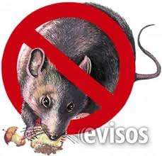 Control de ratas, ratones, pericotes, desratizaciones garantizados 792-4646control de ratas, ratones, pericotes, desratizaciones garantizados 792-4646