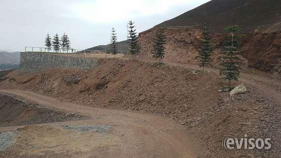 Terreno para casa de campo pachacamac