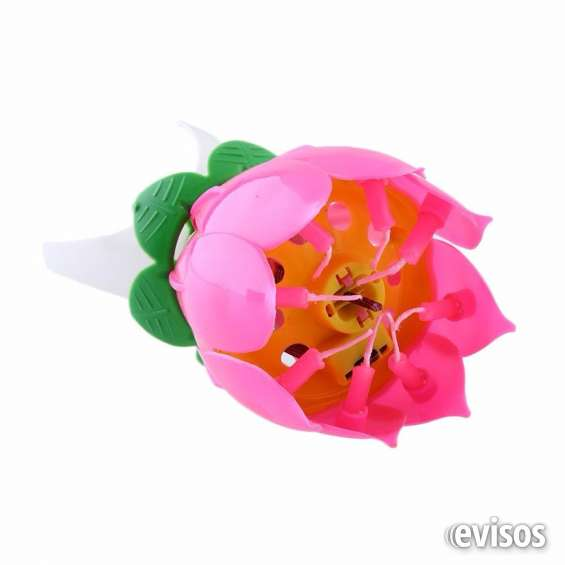 vela musical flor de lotto
