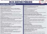 EL NUEVO RÉGIMEN DEL SERVICIO CIVIL EN EL SECTOR PÚBLICO