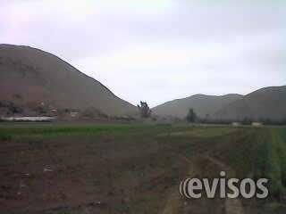¡¡¡vendo terreno de 43,000 m2 – ex fundo chuquitanta - smp!!!