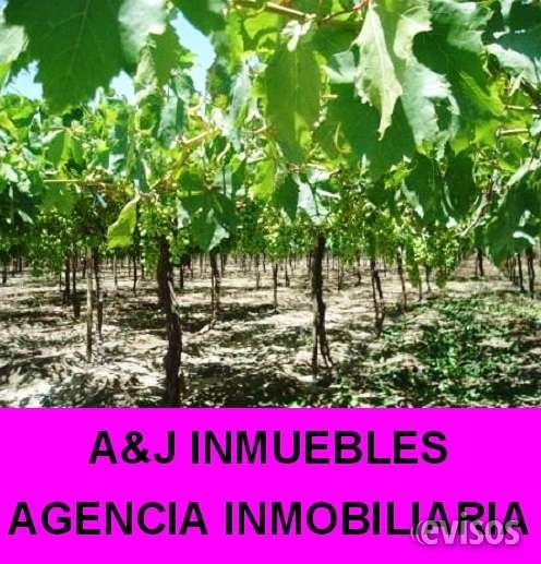 Se vende terreno agrícola en yauca del rosario 146 ha.