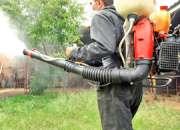 Fumigacion ecologica control de insectos, roedore…