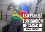 Fumigacion 5080253 control de plagasurbanas eko planeet