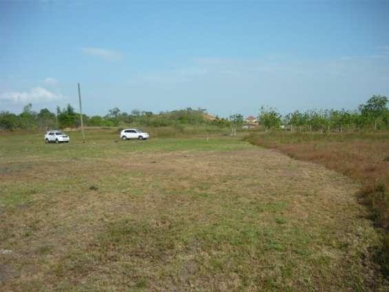 Ocasión vendo terreno agrícola más de 1.5 has. - 10,000 usd - pacora - lambayeque