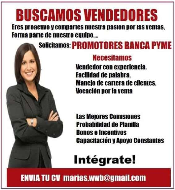 Promotores banca pyme