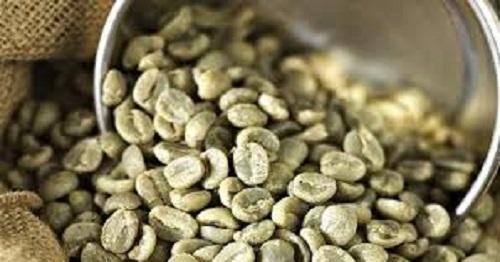 Fotos de Cafe verde para adelgazar (producto organico 100% natural) 6