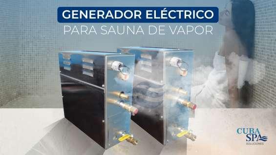 Generadores de vapor eléctrico.