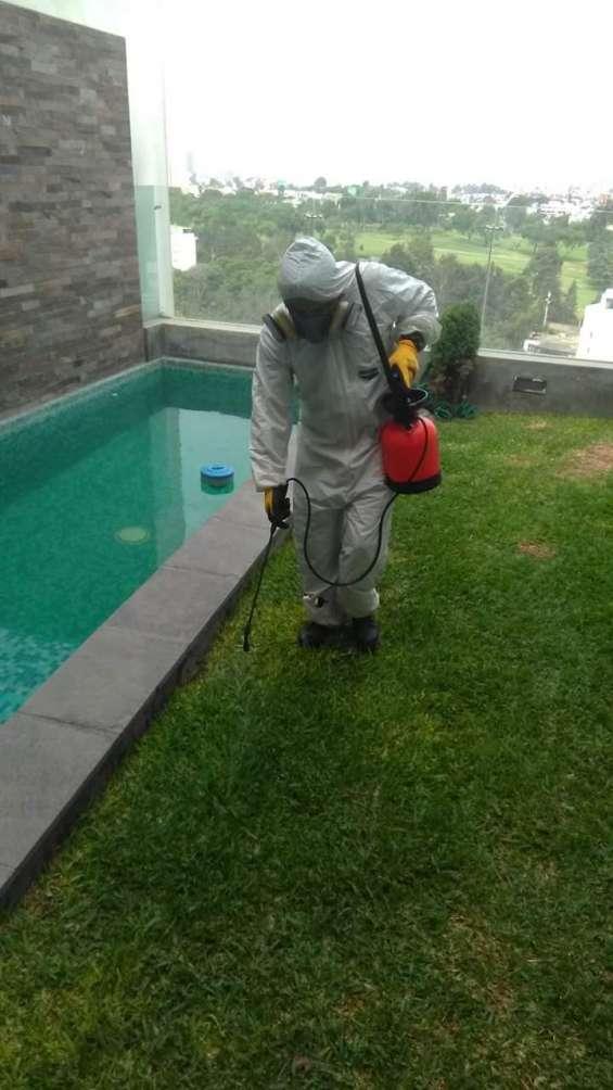 Fotos de Fumigacion, limpieza de cisterna y tanque, control de plagas 2