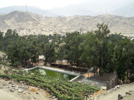 Venta huachipa: 53 has de fundo villa kotska con instalaciones listas