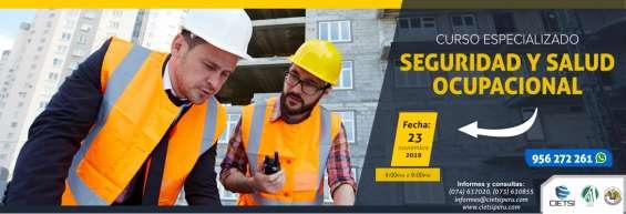 Curso especializado seguridad y salud ocupacional 2019 (nuevo)