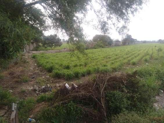 Remato terreno en huando - huaral