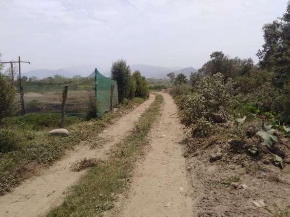 Remato terreno en huayan - huaral
