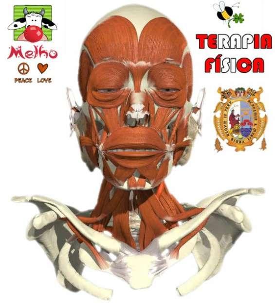 Terapia fisica integral en parálisis facial domicilio