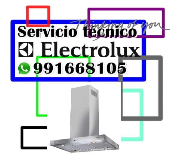 991668105 mantenimiento y reparacion para campanas extractoras electrolux